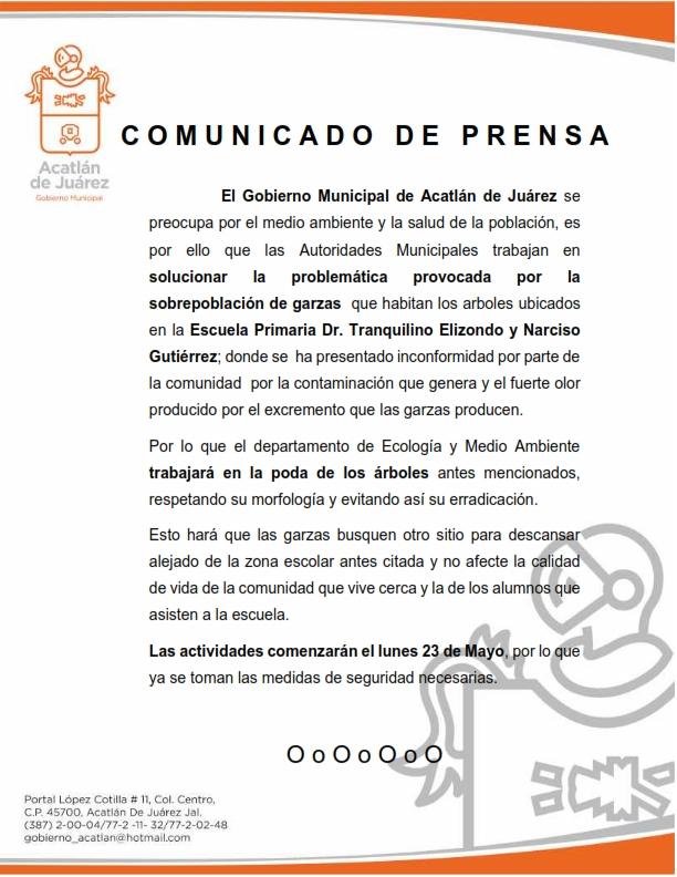 comunicado-ecologia-poda-de-arboles_001