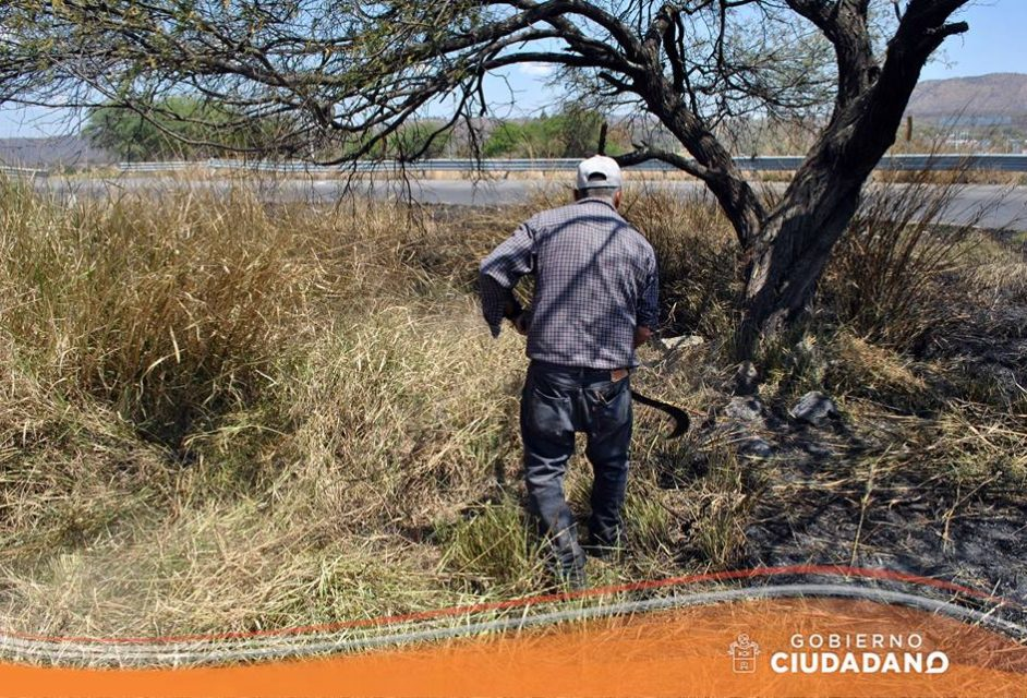 limpieza-entrada-a-la-delegacion-de-bellavista-acatlan-de-juarez-2017_004