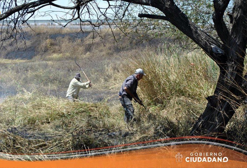 limpieza-entrada-a-la-delegacion-de-bellavista-acatlan-de-juarez-2017_005