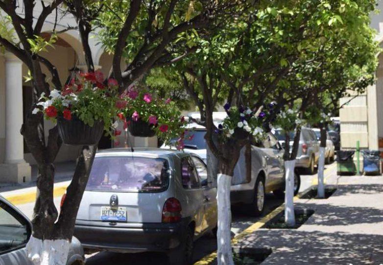 trabajos-de-embelleciemiento-acatlan-de-juarez_05